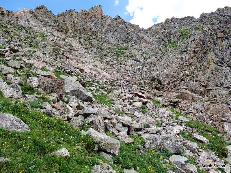 Jumble of rocks and grass