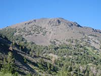 Mt. Rose midway on New Mt. Rose Trail