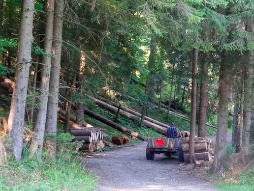 Droga pod Reglami near Dolina Małej Łąki