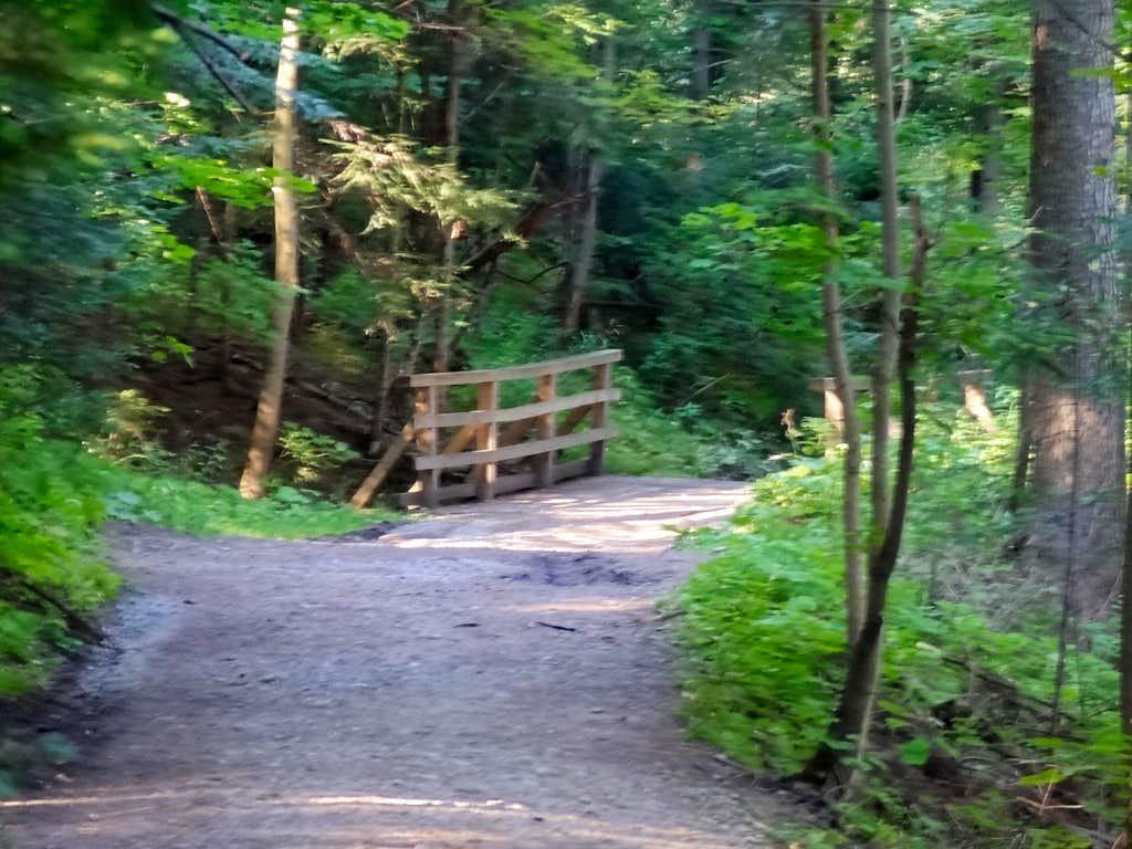 Droga pod Reglami near Dolina Białego