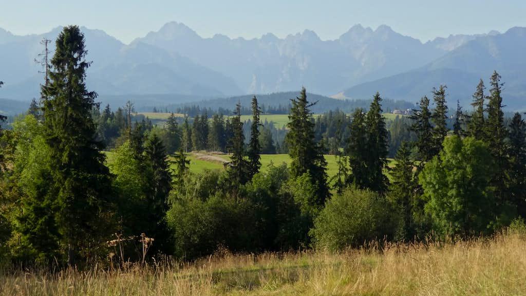 Tatras from Bukowina Tatrzasnka