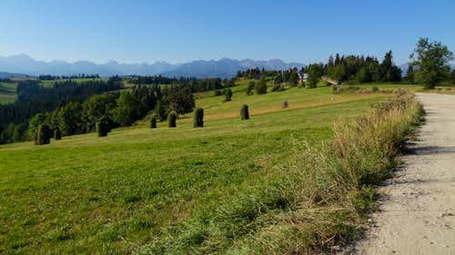 High Tatras seen from the Kotelnica ski resort