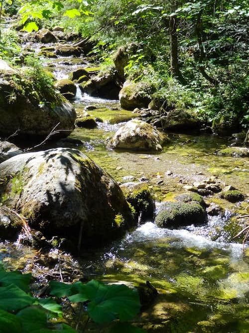 Stream in Dolina Małej Łaki