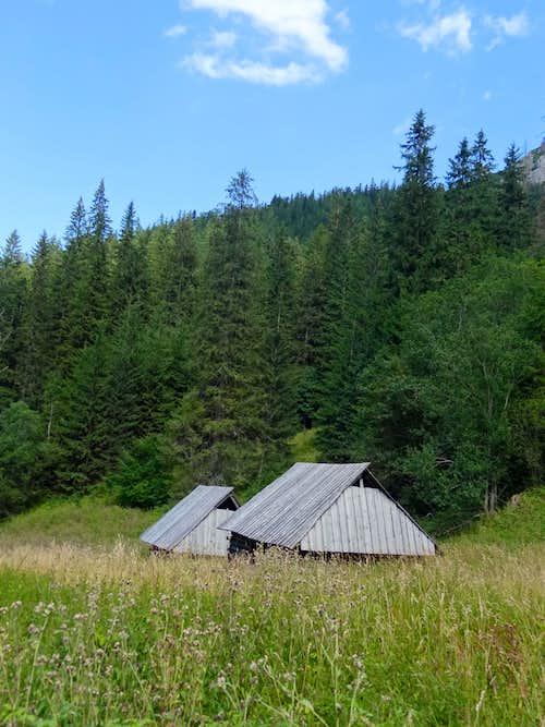 Huts in Strążycka Polana