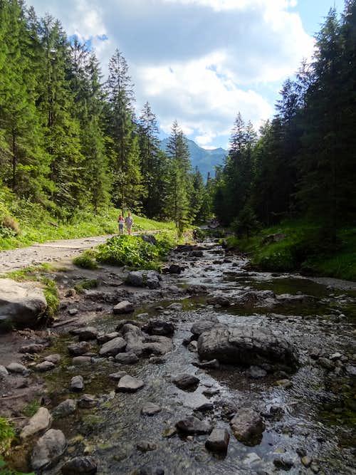 Dolina Małej Łąki & Dolina Strążycka