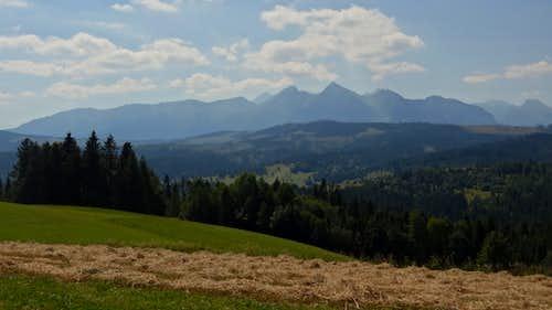 Afternoon panorama from Przełęcz nad Łapszanką