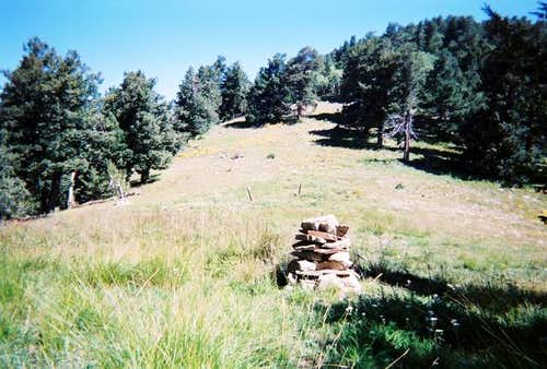 The rock cairn in the meadow.