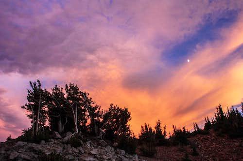 Three days in Lassen Volcanic  National Park