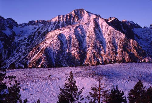 Mount Alice and Buck Mountain