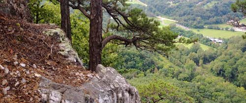 The view from just below the north summit - Seneca Rocks WV