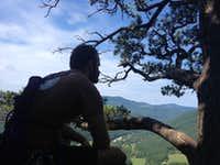 Judge looking all contemplative - Seneca Rocks WV
