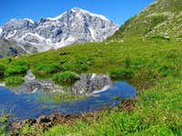Reflection of Ortler in little pond just by the Dusseldofer Hutte