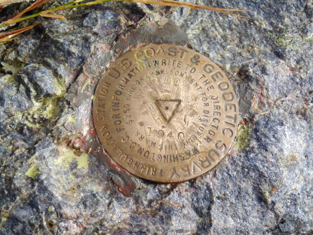 Tyee Mountain Benchmark