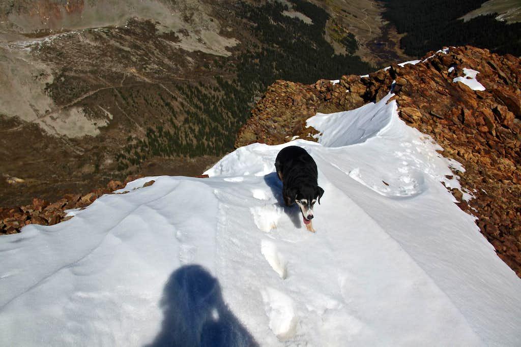 SE ridge higher up