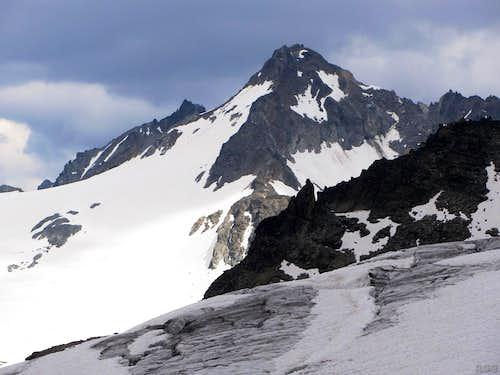 Dreiländerspitze from the Ochsentaler Glacier