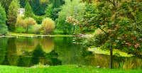 Autumn on the Lake Cei