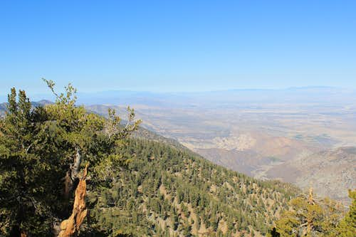 Northeast View from trail to Mount Baden-Powell