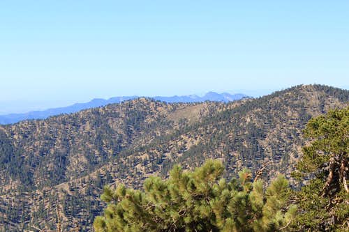 Mount Wilson in Distance from Mount Baden-Powell