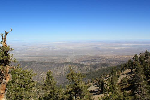 View north from Mount Baden-Powell