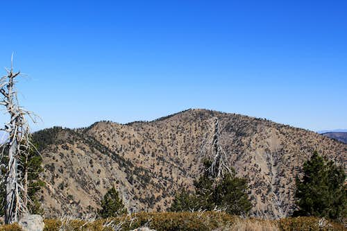 Mount Baden-Powell and Mount Burnham from Throop Peak
