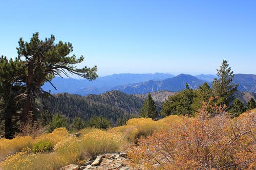 Ridge Traverse with Rim of the World Views in San Gabriel Mountains