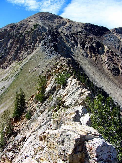 Narrow NE Ridge
