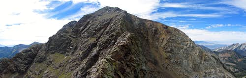 Red Baldy northeast ridge