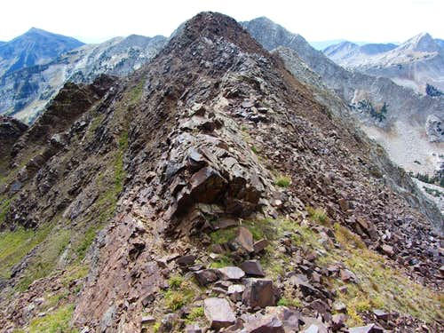 Red Baldy southwest summit