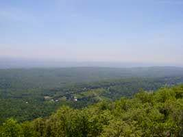 The View from Catfish Mountain