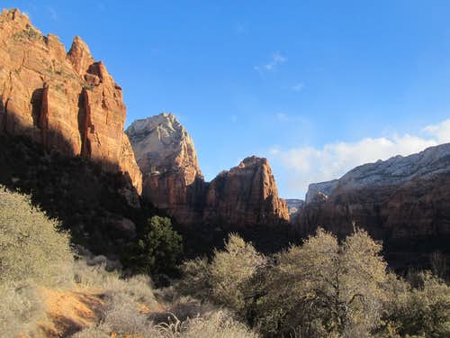 looking into Zion Canyon