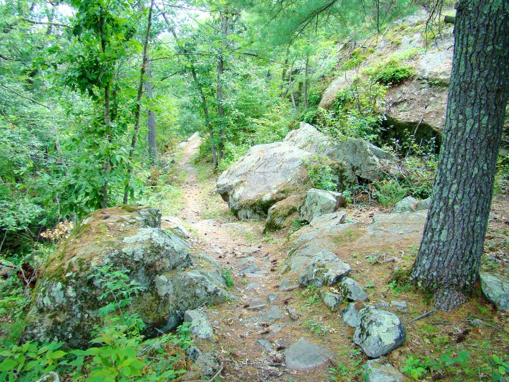 Trail to Eagle Peak