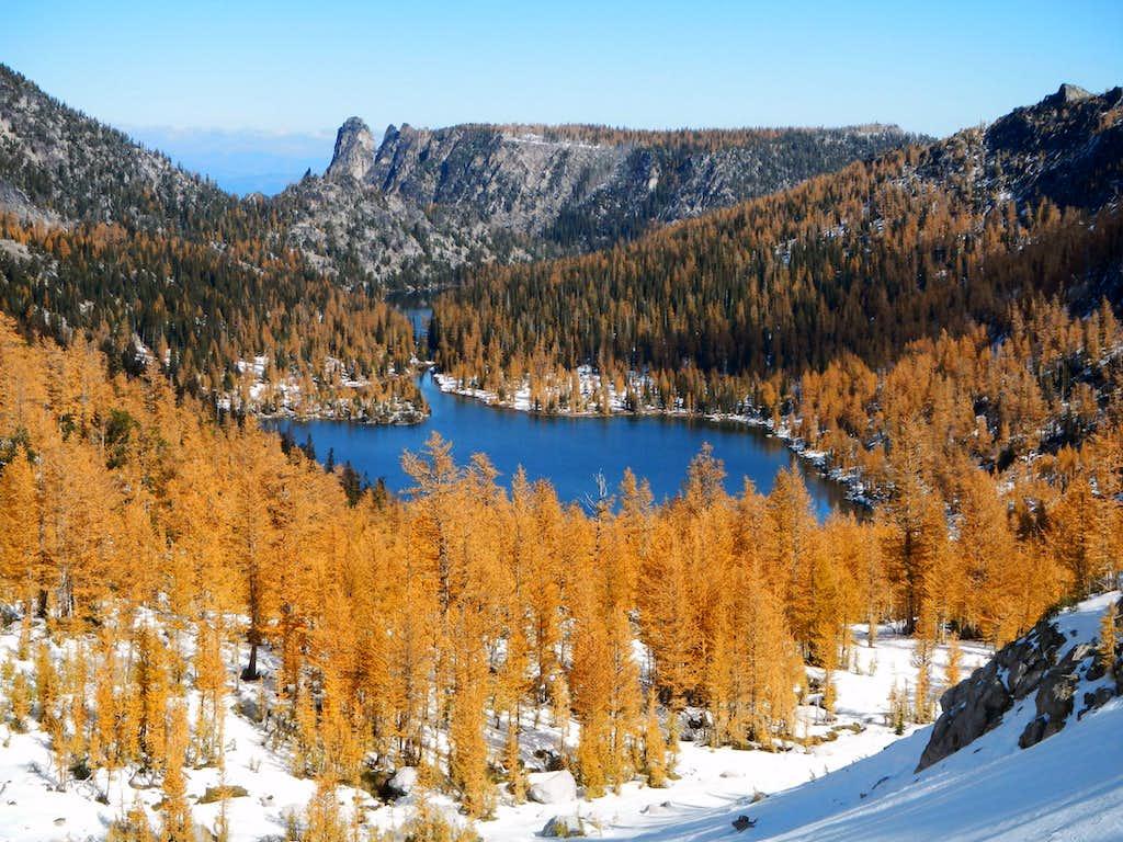 Shield Lake Larches