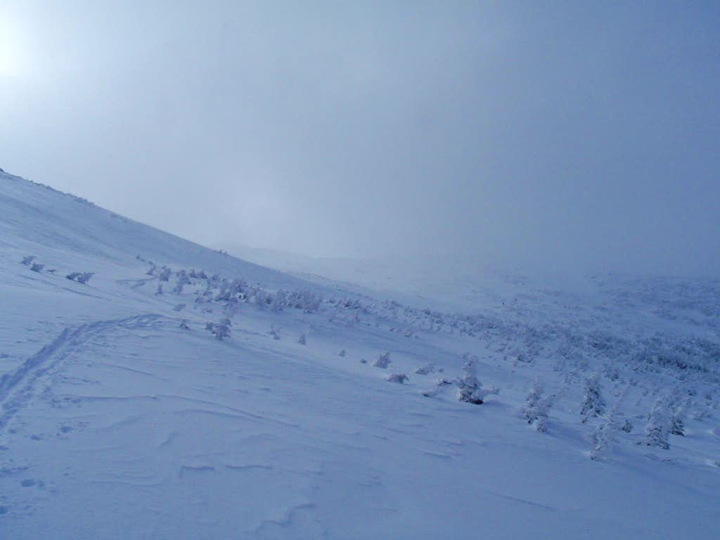 Trail.Mt.Washington