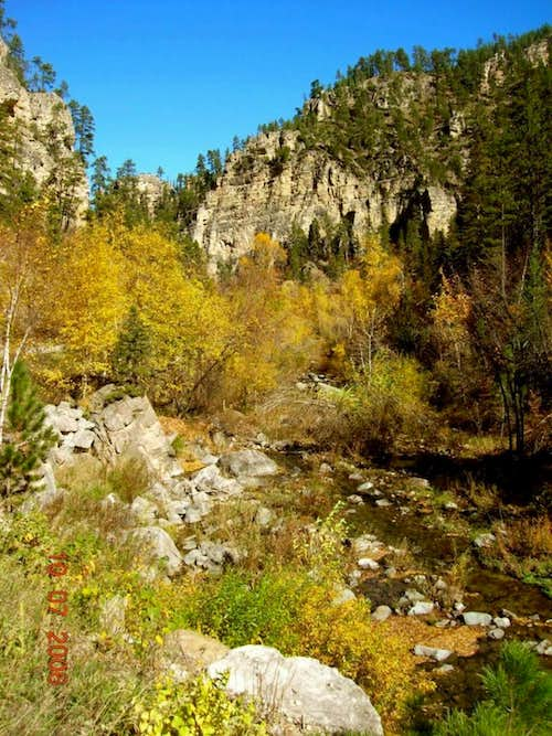 Spearfish Canyon View