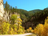 Spearfish Canyon Foliage