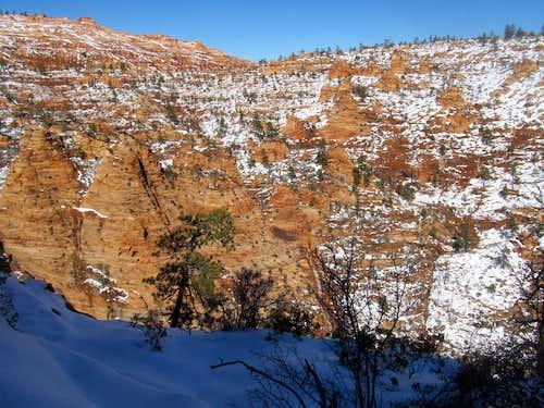 Wintering it in Zion