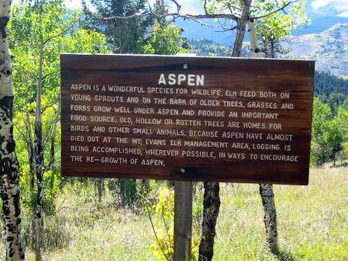 Aspen info - great habitat!