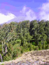 Semeru peak from Kalimati....