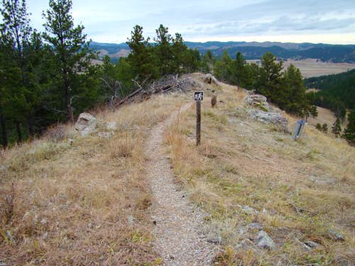 North Part of Trail Loop