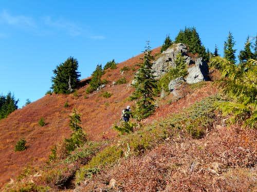 Fall Color Near Bare Mtn. Summit