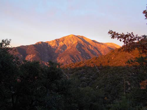 Alpenglow on San Bernardino Peak