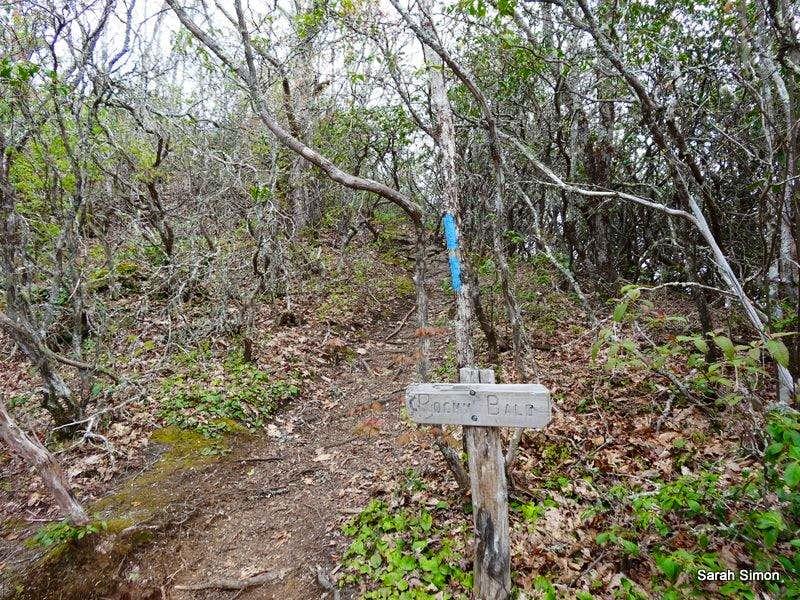 Trail spur