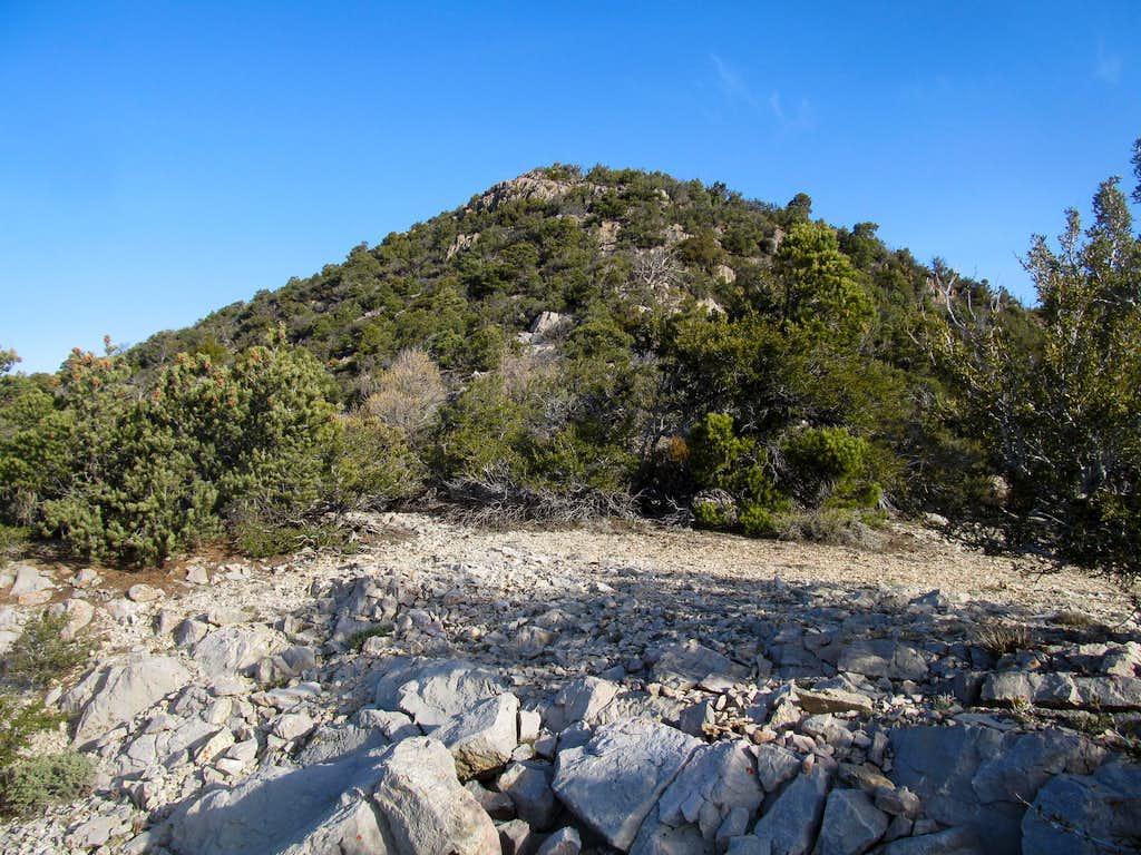 south ridge of Wah Wah HP