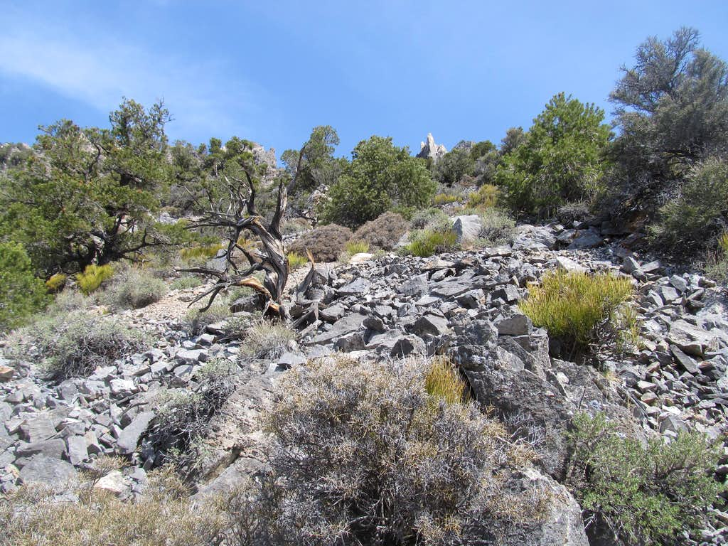 talus along the route