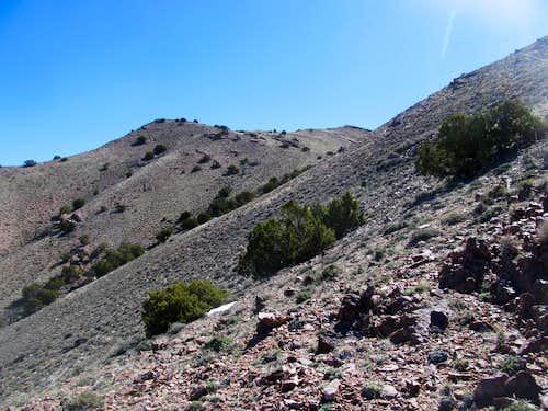 sidehilling up the ridge