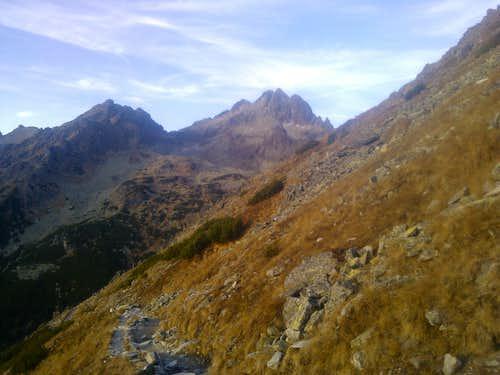 Alpine transition