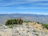 Worthington Peak (NV)
