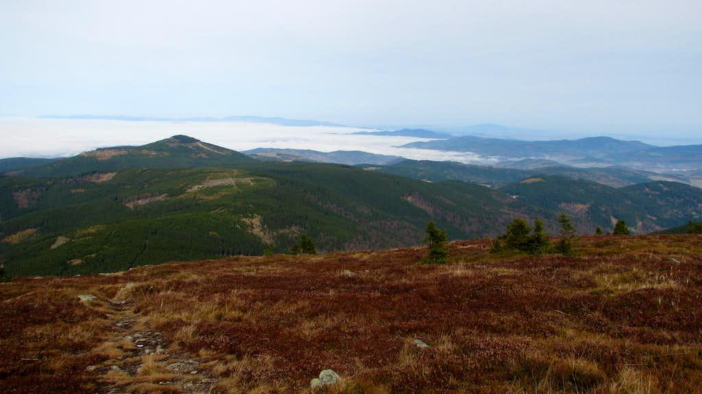 Czarna Góra from Śnieżnik