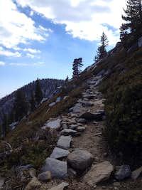 On the way up San Jacinto