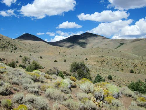 Fagin Mountain (NV)